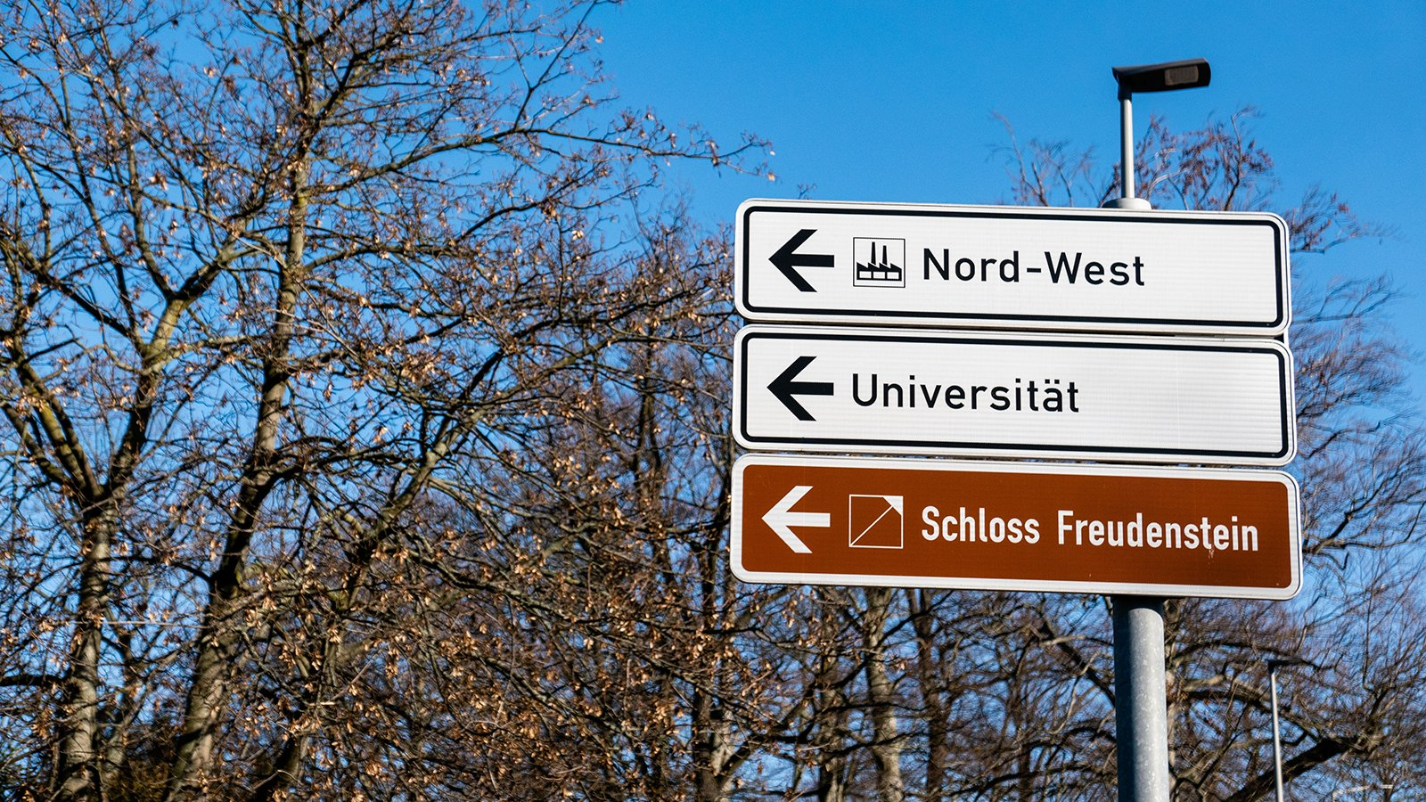 Why Is Germany the Best College Destination?